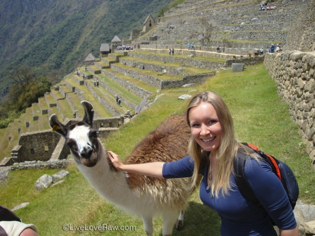 Anya Andreeva with alpaca, Peru, Machu Picchu
