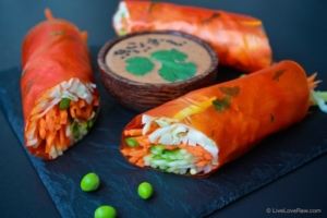 papaya wraps with balinese spicy satay sauce. Raw vegan food by Anya Andreeva, Live Love Raw