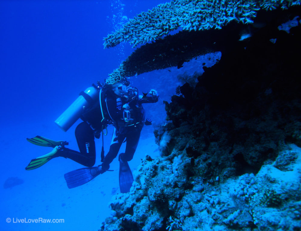 Why scuba diving is just like life