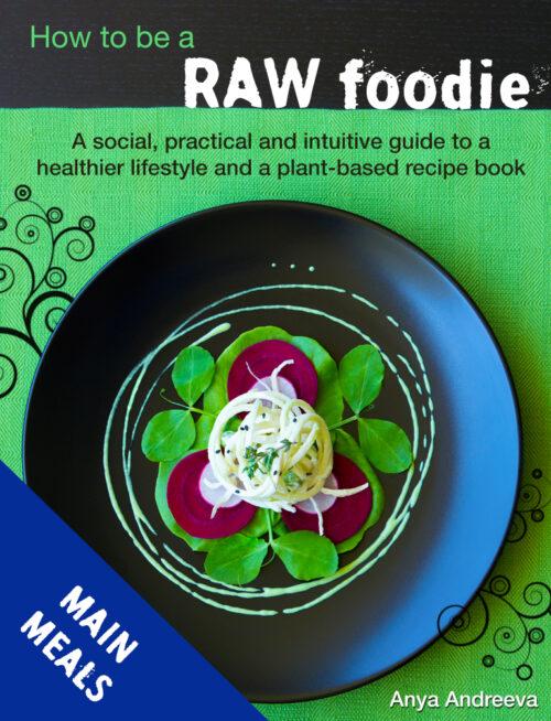 Anya Andreeva's healthy book, raw vegan, vegetarian main meals, food, salads, snacks, entrees, bites, crackers recipes
