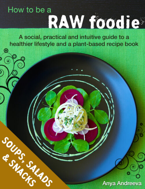 Anya Andreeva's healthy book, raw vegan, vegetarian soups, salads, snacks, entrees, bites, crackers recipes