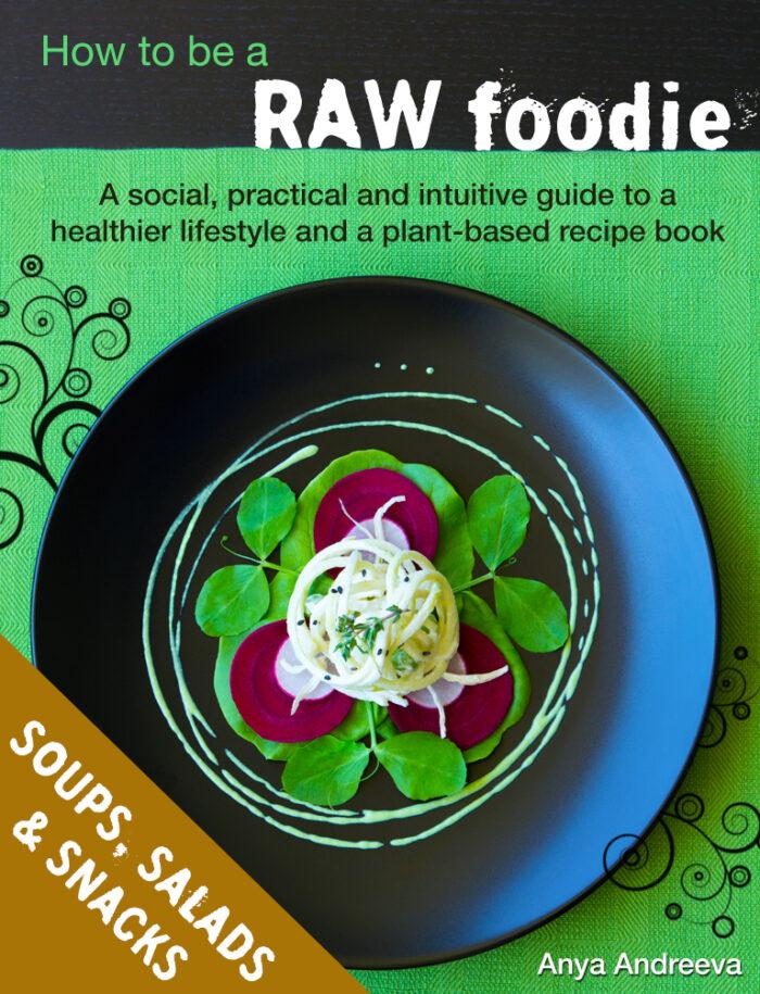 Anya Andreeva's healthy book, raw vegan, vegetarian soups, salads, snacks, entrees, bites, crackers recipes