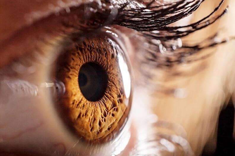 beautiful brown eye close-up
